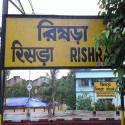 astrologer in rishra
